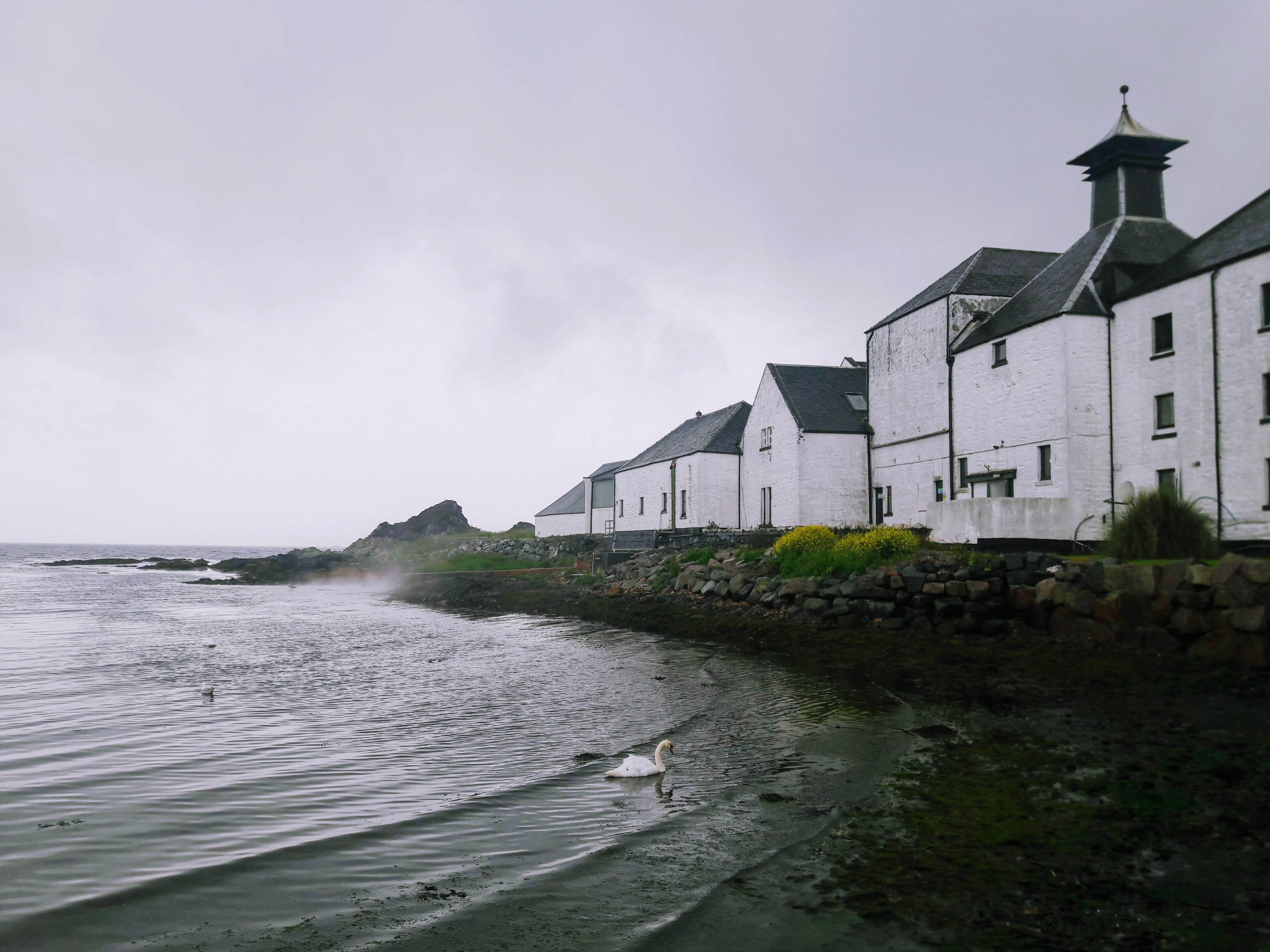 Islay Whisky: 4-day private tour